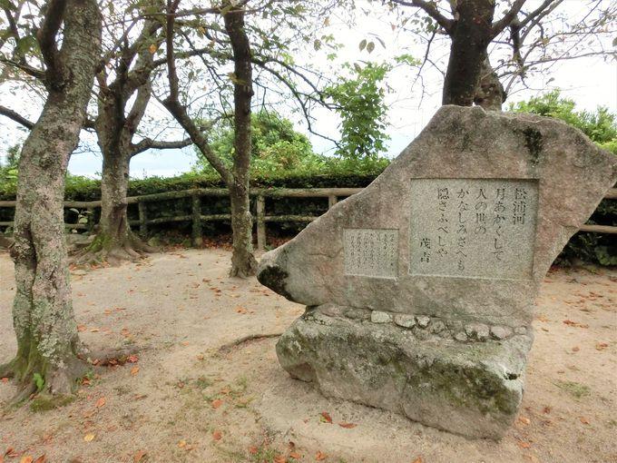 精神科医で歌人でもある斎藤茂吉の歌碑