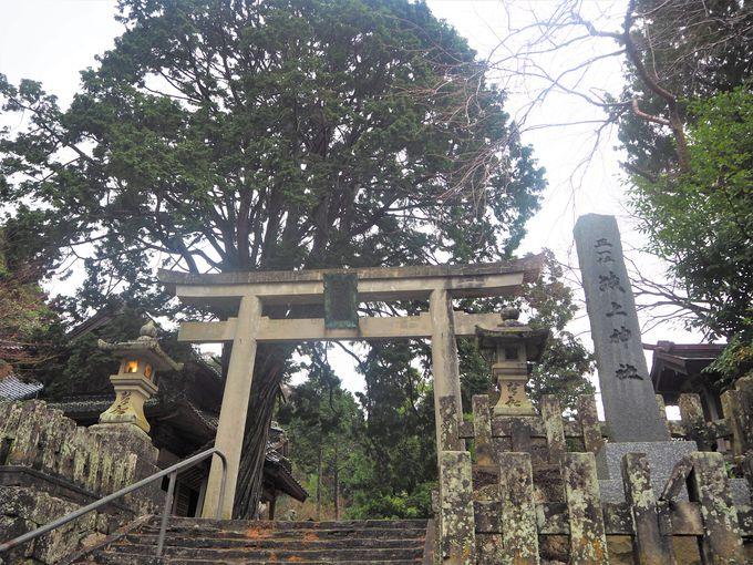 「城上神社」の概要とアクセス