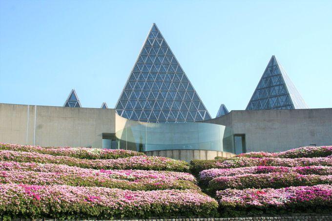 「仁摩サンドミュージアム」のアクセスと概要