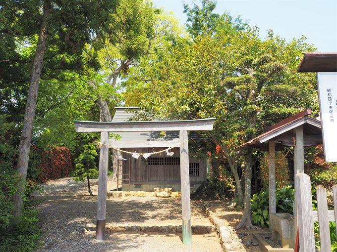 緑豊かな「初生衣神社」境内には竹林も