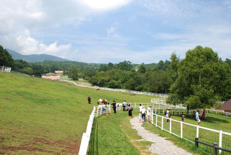 清里の穴場スポット「まきば公園」で牧場とグルメを満喫!