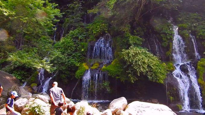 苔がいっぱいの滝を満喫!