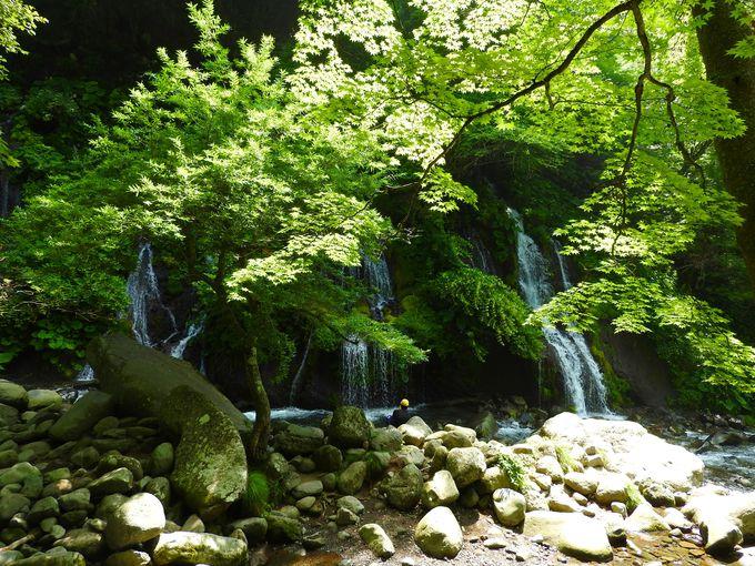8.吐竜の滝