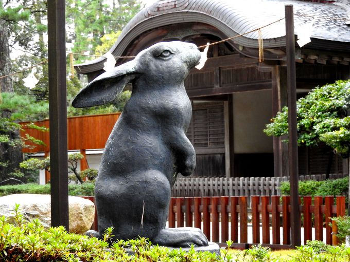 因幡の白兎、大国主命は、医薬の始祖、慈愛の神