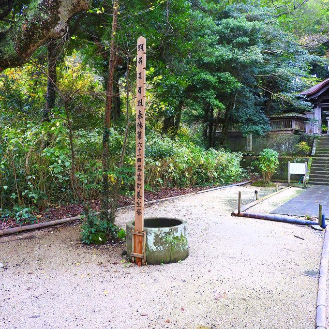 霊廟の静けさを愉しむ