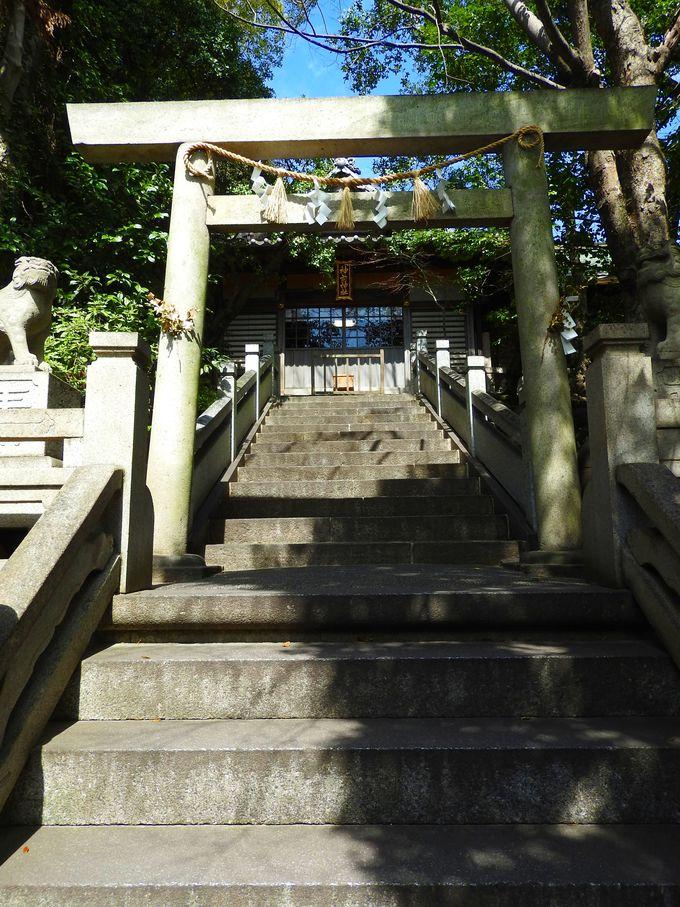 神前神社の神井は子供の健康を祈るパワースポット!