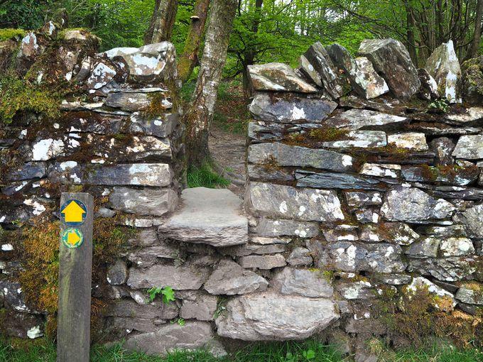 2か所ある階段式出入り口とパズルのような鉄製ゲート