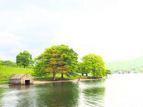 湖畔の絶景フットパスを歩く!英国湖水地方「ウィンダミア湖」で自然散策