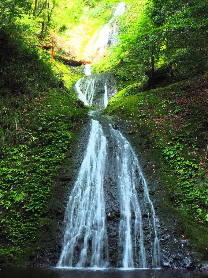 天然記念物、阿寺の七滝