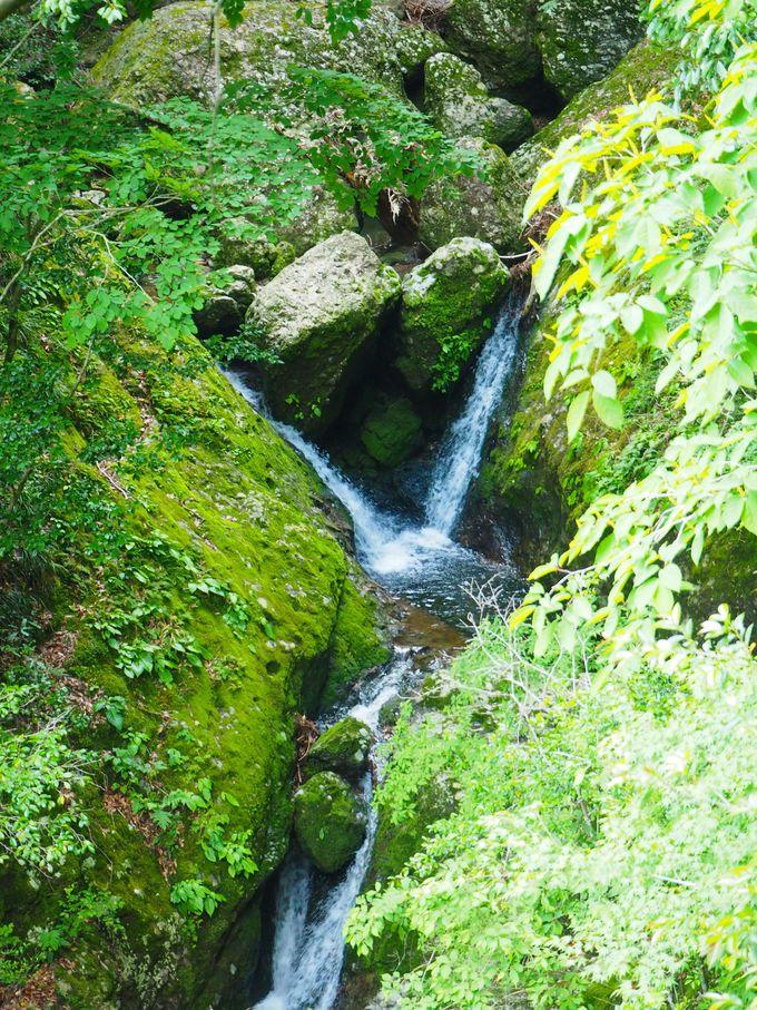 最初の5分は巨石の間を流れ落ちる小滝の連続
