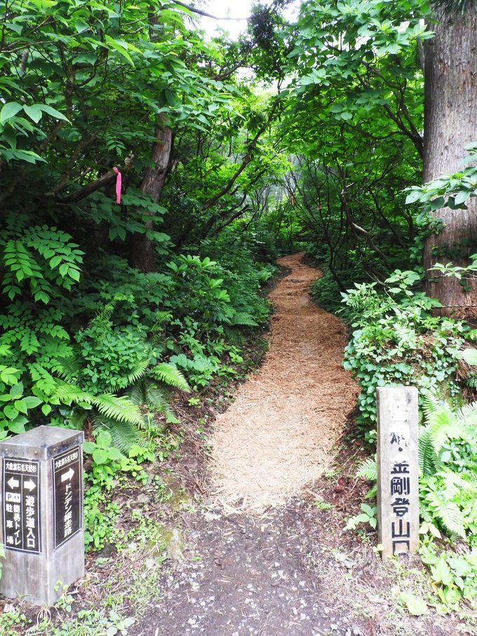 登山道入口から周回コースまで少しの登り