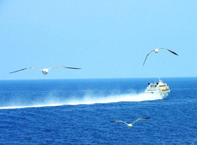 新潟県の各自治体でも独自の観光支援策を実施(3)