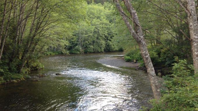 ケチカン川散策を満喫!
