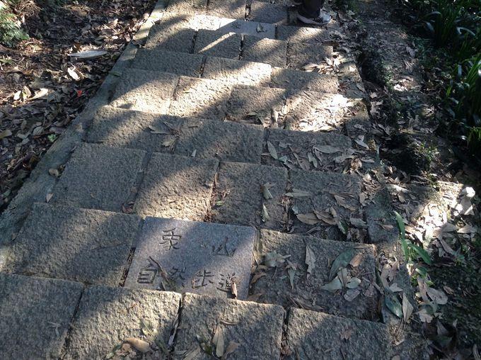 象山自然歩道を登る