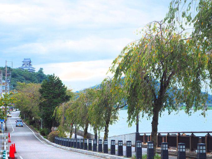 国宝犬山城を眺めながら入場