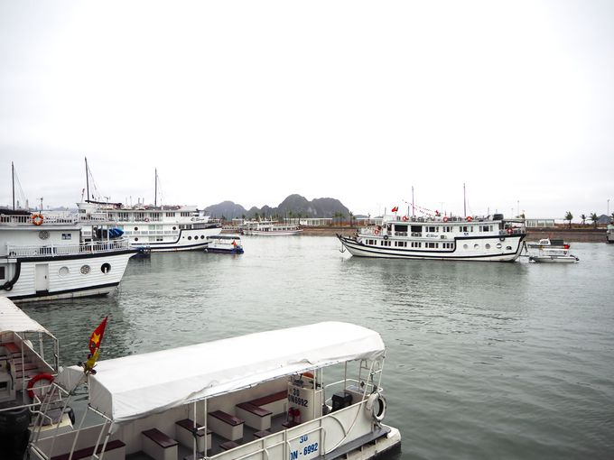 ハロン湾の3海域をカバーするオウコー号クルーズ