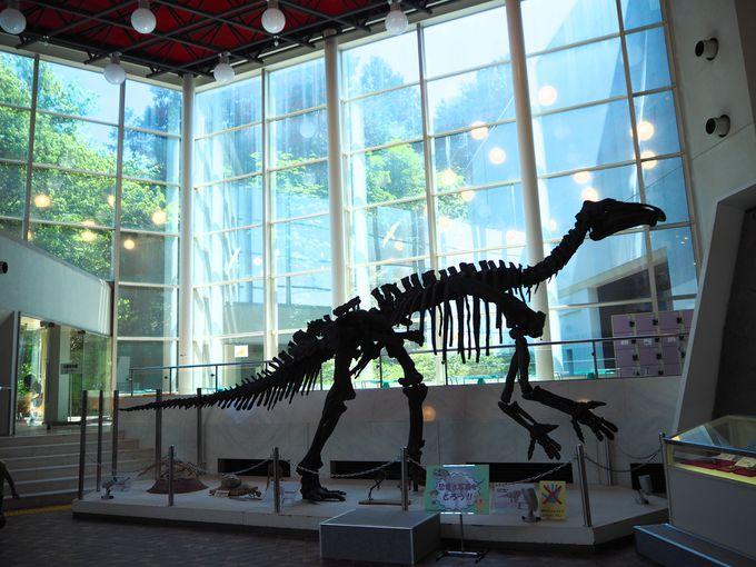 まるで生きている!驚異の恐竜精密画「小田隆」の世界