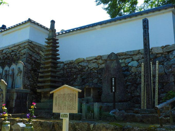 歴史に溢れた西教寺を堪能!