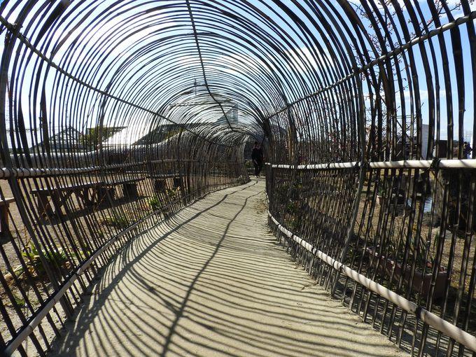 まるで大蛇の体内?梅の館前の「竹のトンネル」を抜けよう