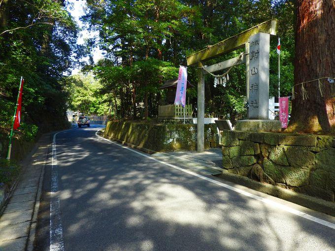 神秘的な風景につつまれた射山神社