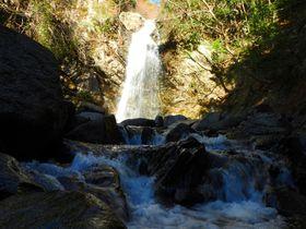 朱塗りの橋も美しい!豪快な三重県伊賀「白藤の滝」散策