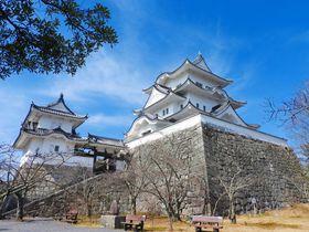 伊賀上野城や忍者屋敷も!上野公園は歴史ファン必見スポット