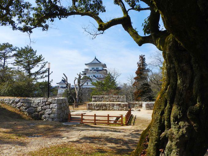 見どころ満載の上野公園!まず見学プランを決めよう
