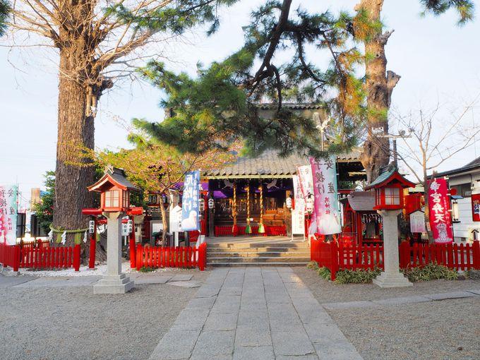 静かな佇まいの鴻神社境内