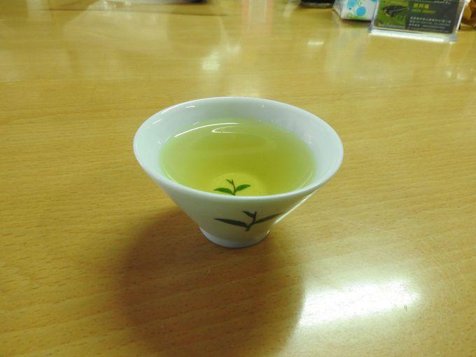 阿里山高山茶試飲はマイボトルを持参しよう!