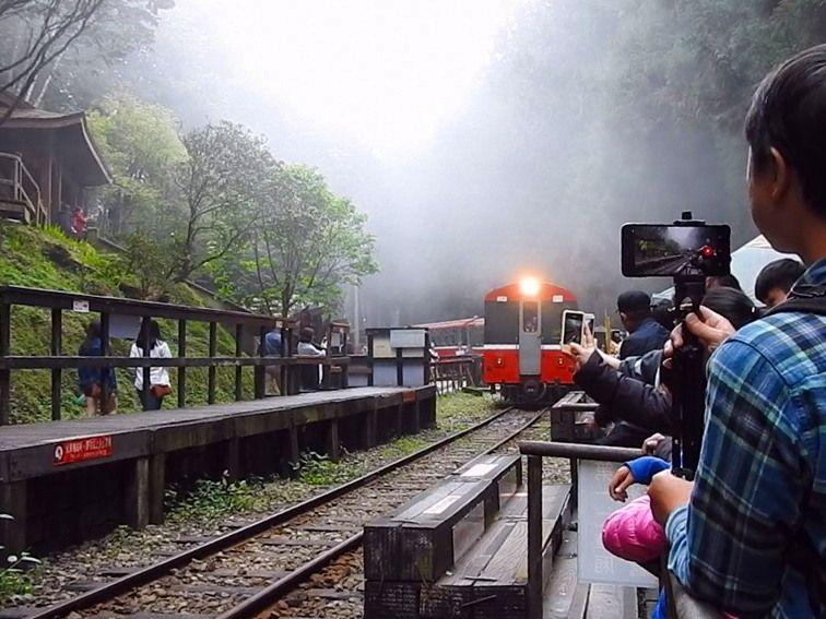 阿里山森林鉄道に静かに降る霧