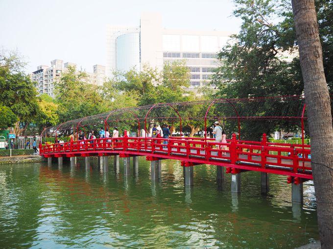 緑濃い公園内では台湾リスも登場!