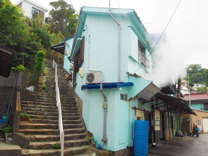 日間賀島と篠島のグルメと言えばこれ!