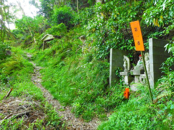 大師ヶ岳山道を歩こう