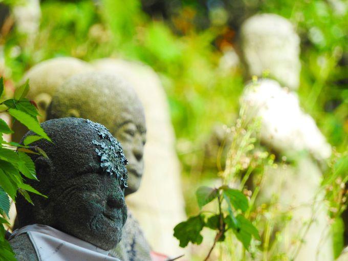 素朴な表情の五百羅漢像