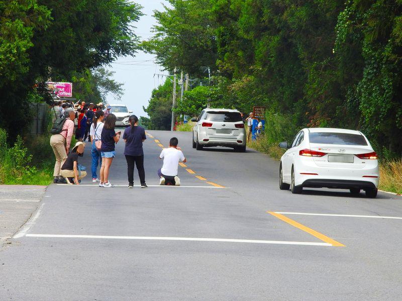重力逆転!?韓国済州島「おばけ道路」は強力ミステリースポット