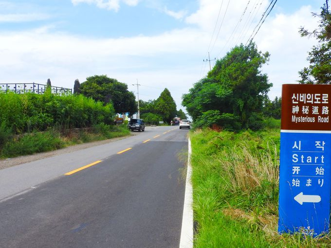 """「神秘の道路」と呼ばれる通称""""おばけ道路""""とは?"""