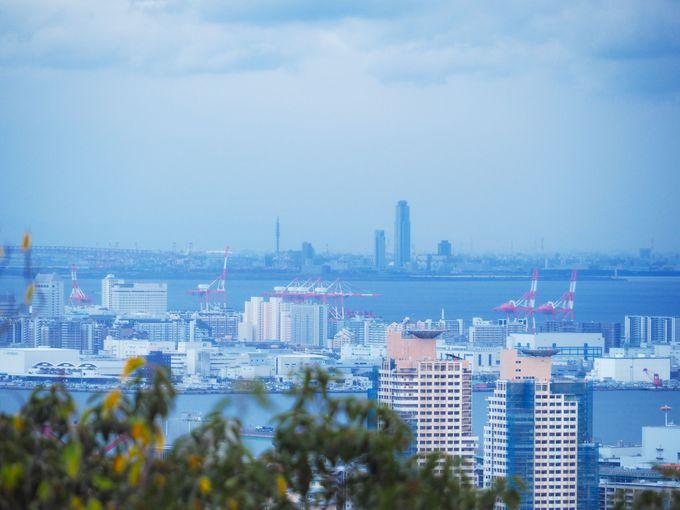 大阪湾一望の「見晴らし展望台」で一休みし、「猿のかずら橋」へ