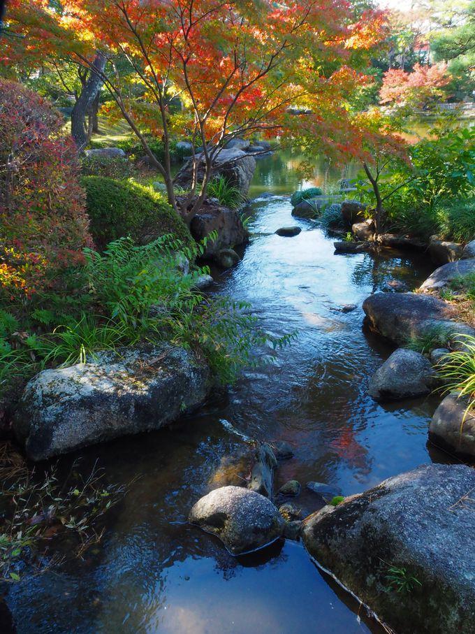 池泉回遊式庭園を散策しよう