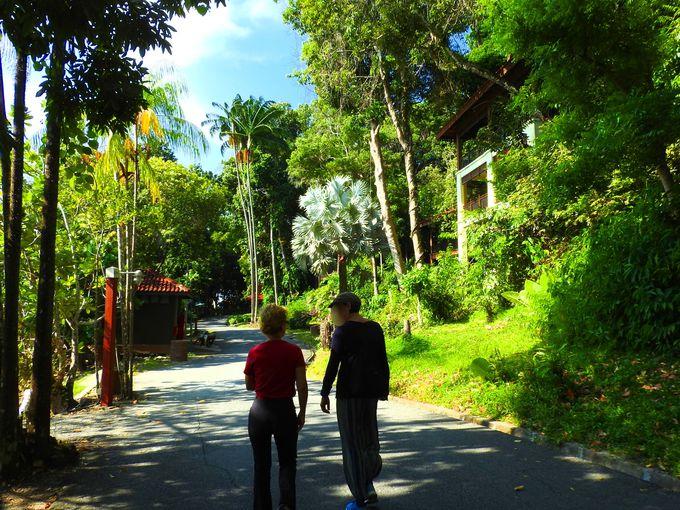 ベルジャヤ ランカウイ リゾートのロビー前から出発