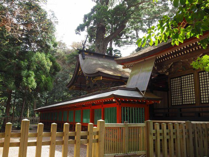 鹿島神宮境内では、まず拝殿でお参りを