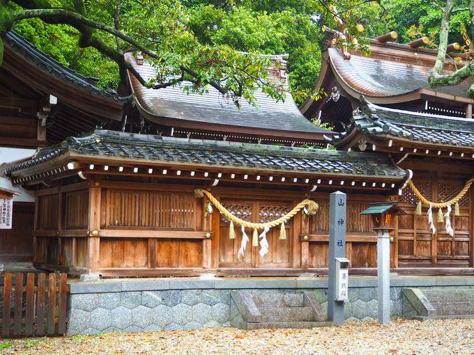 圧倒的なパワーの多賀神社、富士浅間神社、山神社