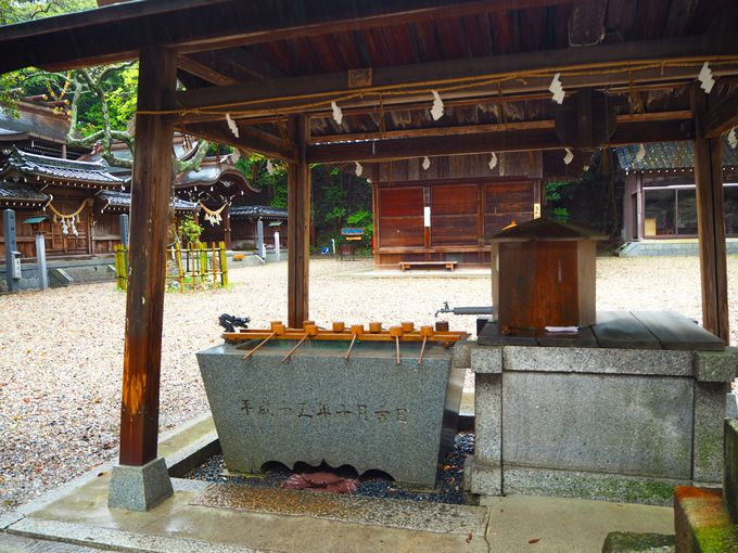 カニが出迎える多賀神社の一之鳥居