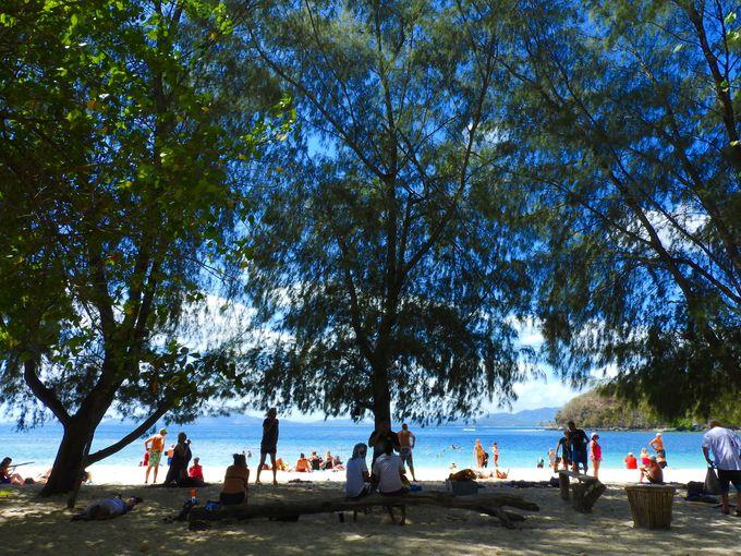 シュノーケリング、木陰で休憩、そしてビーチをブラリ歩こう
