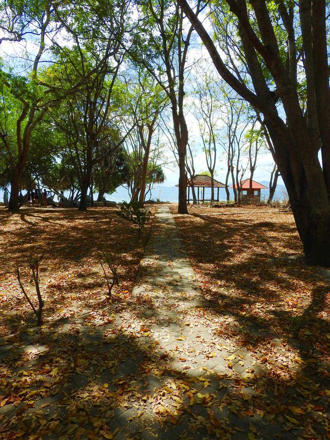 ビーチを歩いてナングー島を半周!
