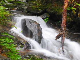 岐阜・美濃市の片知渓谷で「千畳岩」と「かやの滝」に超接近!