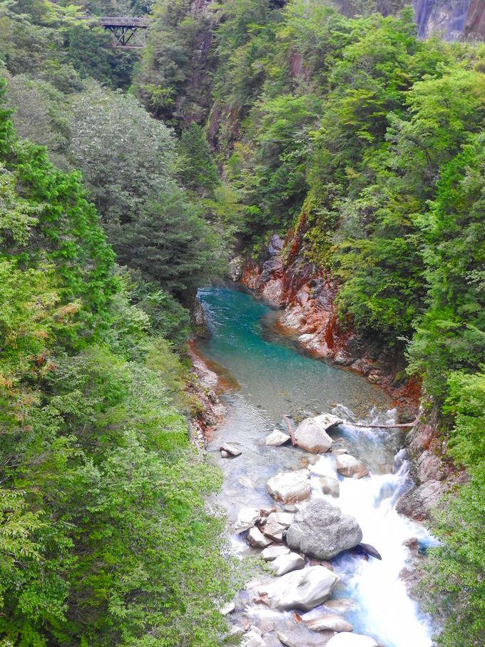 川浦一号橋からの風景