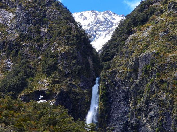 ビジターセンターで滝への行き方を確認しよう