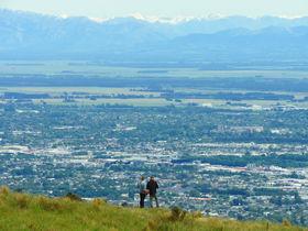 超絶景!NZクライストチャーチのゴンドラで360度パノラマを楽しもう