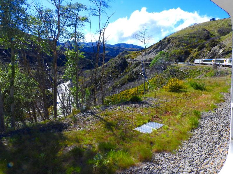 しばらく列車右側に広がる絶景渓谷