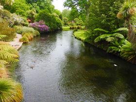 まるで英国庭園!NZクライストチャーチのエイボン川を歩こう